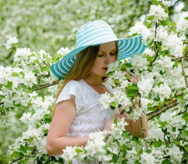Когда цветут яблони в разных регионах России