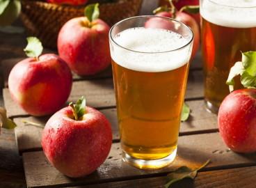 Как использовать яблочный жмых после соковыжималки: 5 оригинальных рецептов