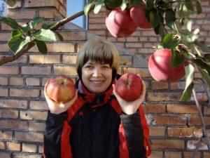 Яблоня Апорт Дубровского: особенности сорта и ухода